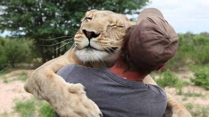 5 Rekomendasi Film Seru tentang Persahabatan Manusia dan Hewan