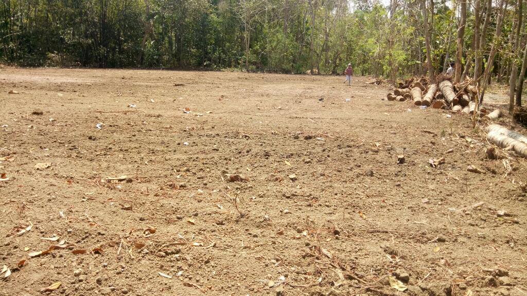 Beli Tanah 100% Untung di Wates, 63 Alternatif Lokasi, PANGKAS HARGA 25%