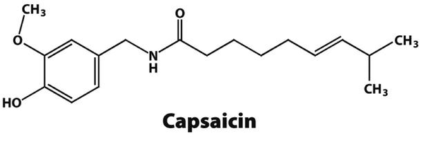 Mengenal Lebih Dekat Capsaicin, Senyawa Khusus Pada Cabai