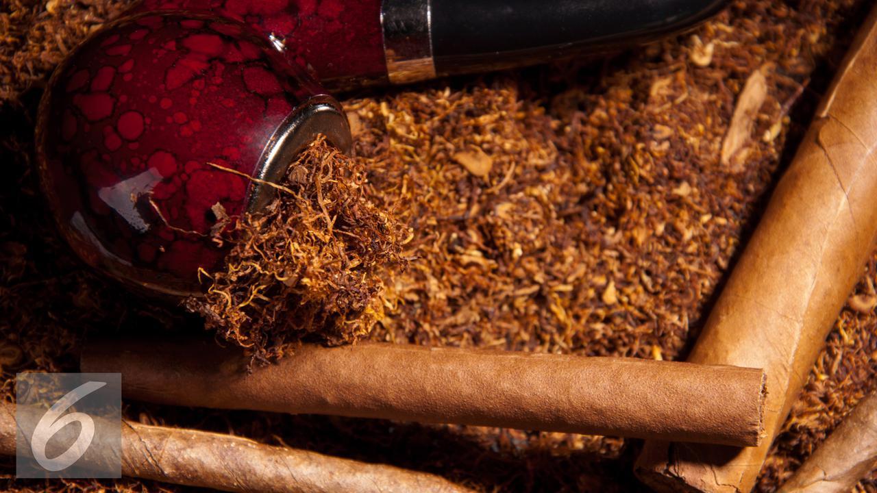 8 Jenis Tanaman Narkotika Ini Ternyata Jadi Obat Mujarab di Zaman Kuno