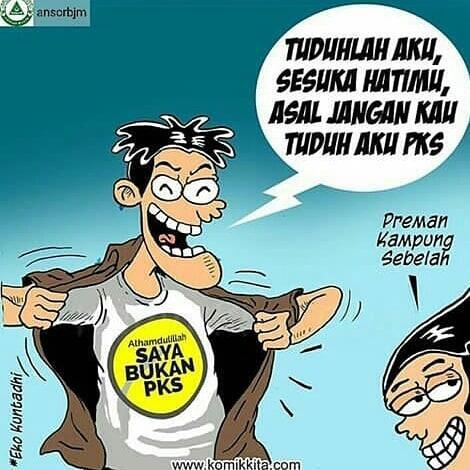 HNW Ungkit Ratna Sarumpaet Dukung Ahok, PPP: PKS 2010 Dukung Jokowi