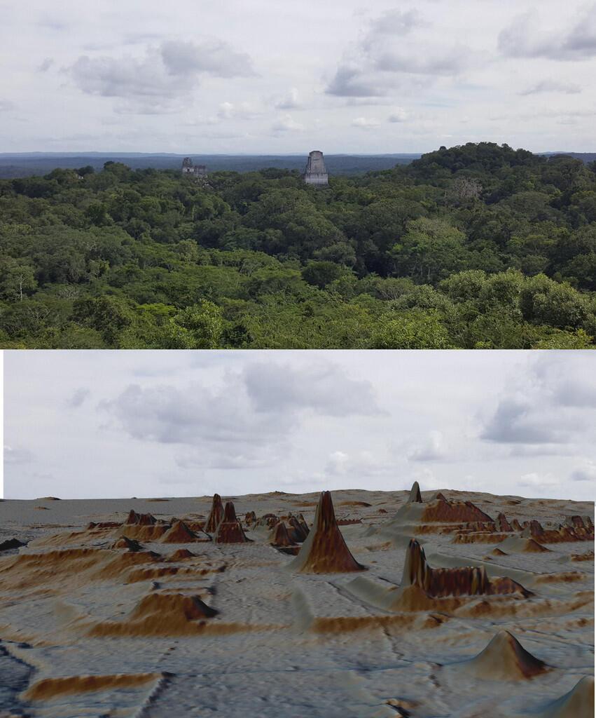 Mengungkap Peradaban Suku Maya yang Tersembunyi Dibalik Kanopi Hutan Guatemala