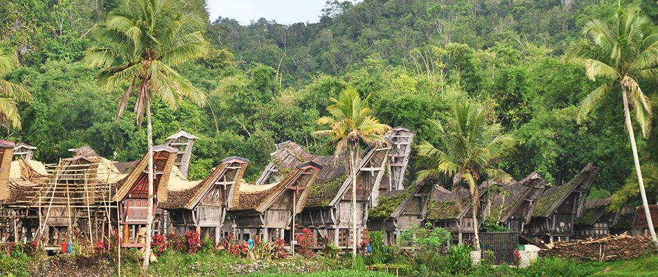 5 Tradisi Unik Suku Toraja yang Mendunia