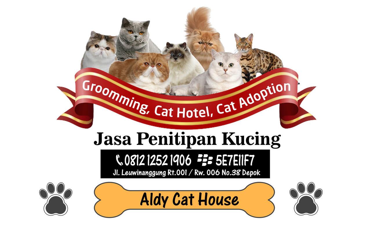 Penitipan Kucing Cibubur