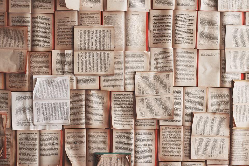 7 Hal yang Patut Diterapkan oleh Kamu yang Memulai Hobi Membaca Buku
