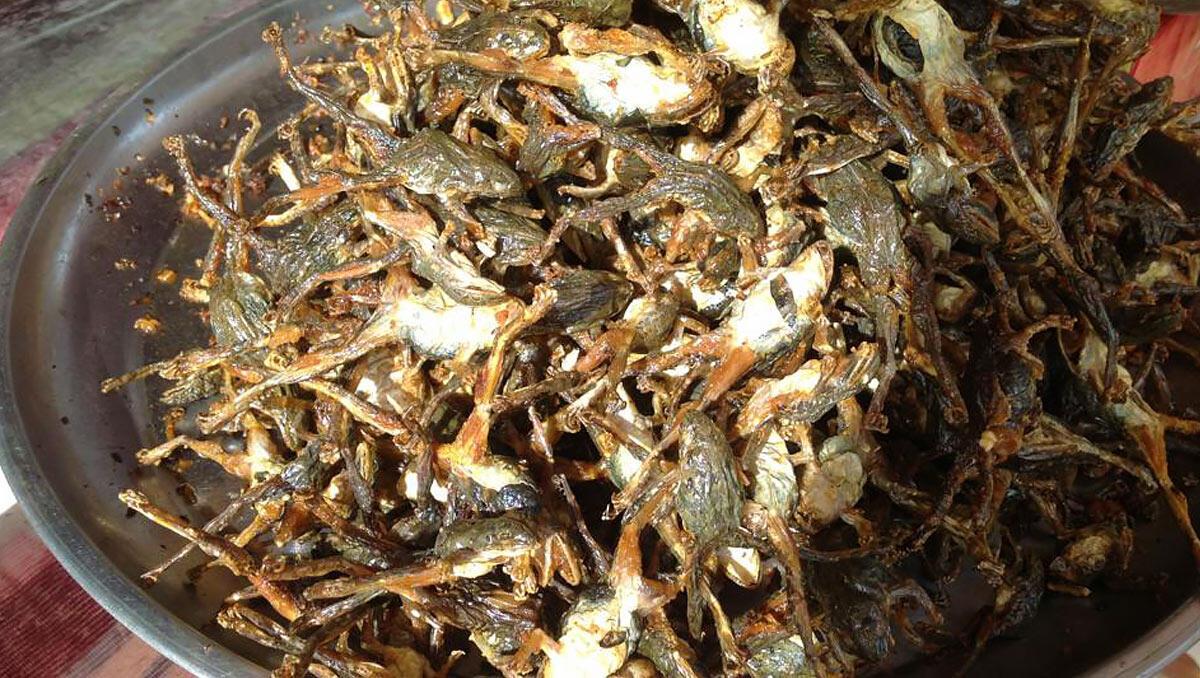 Ngeri tapi Sedap, Ini Dia 5 Kuliner Paling Ekstrim di Kamboja