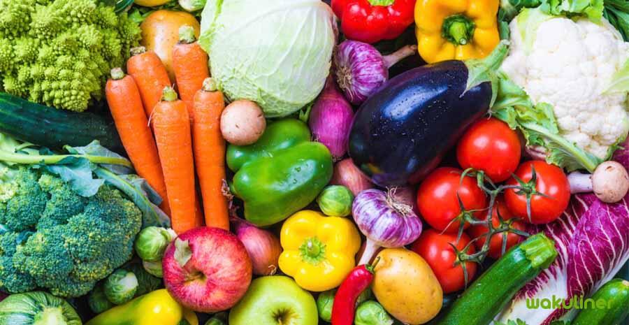 Apa Perbedaan Antara Vegan Dan Vegetarian?
