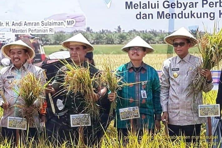 Kementan: Peningkatan Mutu Benih Penting untuk Dorong Produksi Tanaman Pangan