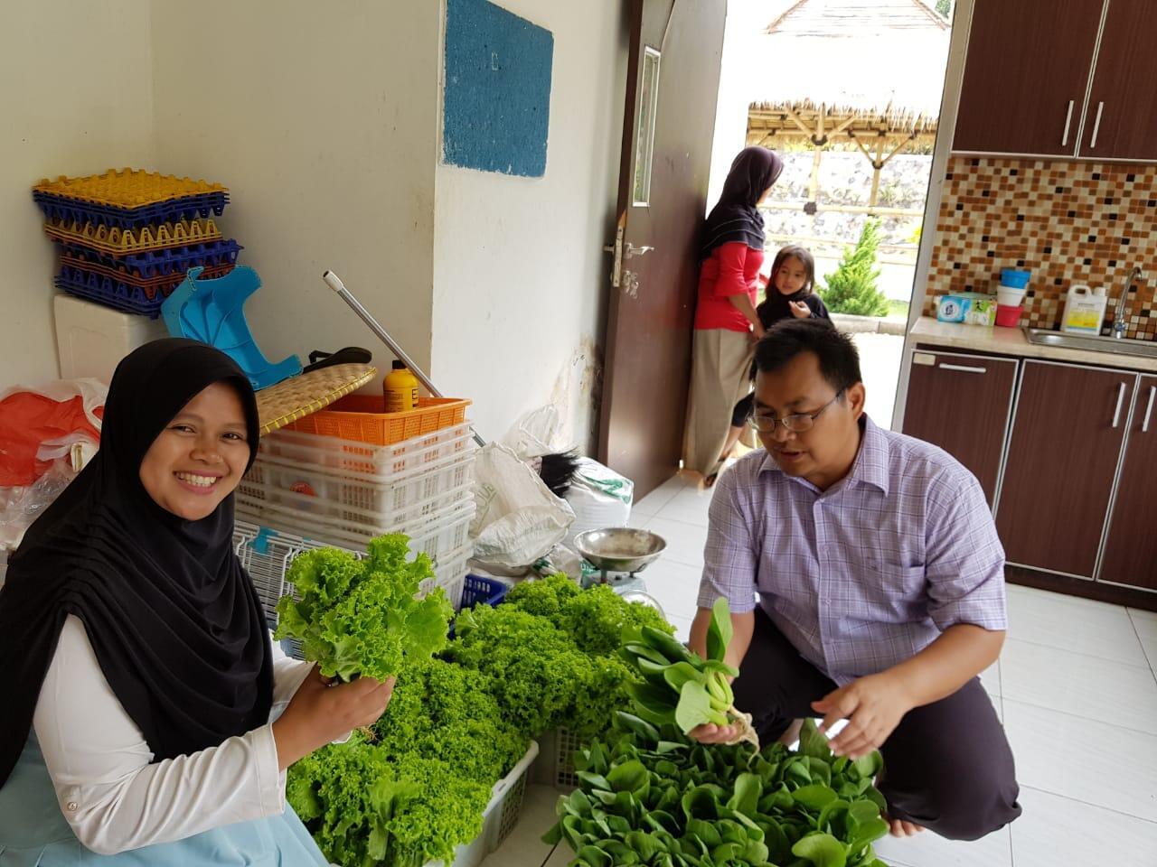 Lewat Taman Teknologi Pertanian, Kementan Dongkrak Perekonomian Desa