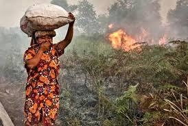 Pengelola Hutan Wajib Laksanakan Kegiatan Pengendalian Karhutla