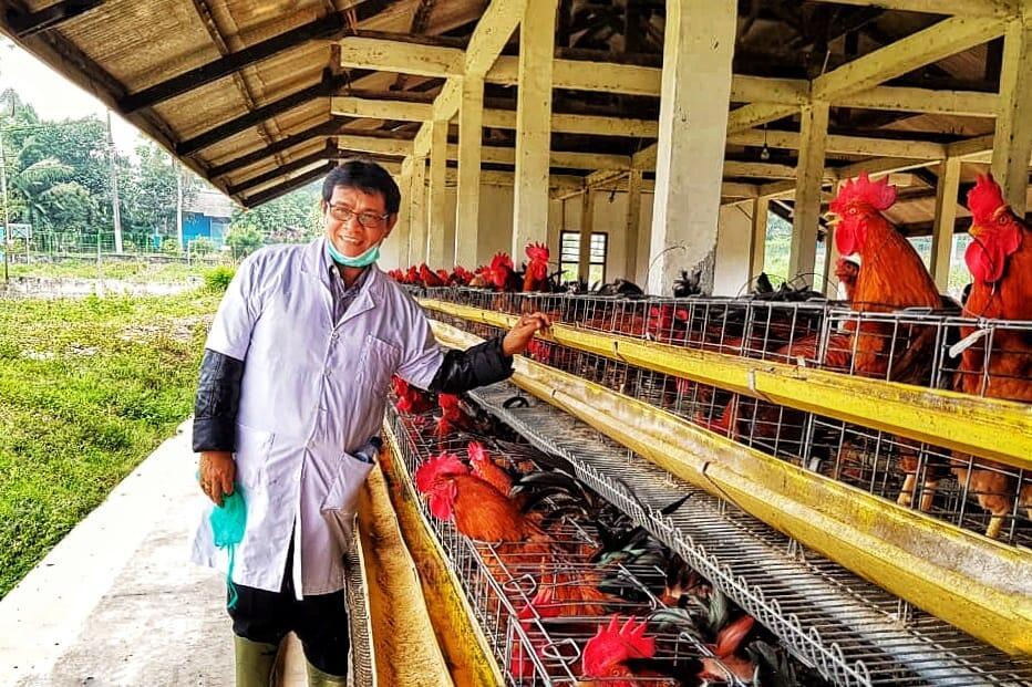 Dua Sertifikasi Ini Kunci Sukses Ekspor Telur Tetas dan Daging Ayam Olahan
