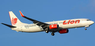 Kronologi Jatuhnya Lion Air Jakarta-Pangkalpinang