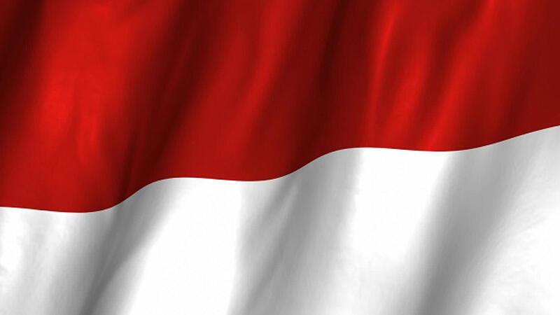 Selalu Gagal Ke Main Event Dota 2, Berikut 5 Pelajaran Berharga Buat Esport Indonesia