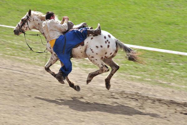 Jigitovka, Olahraga Stunt Berkuda Rusia