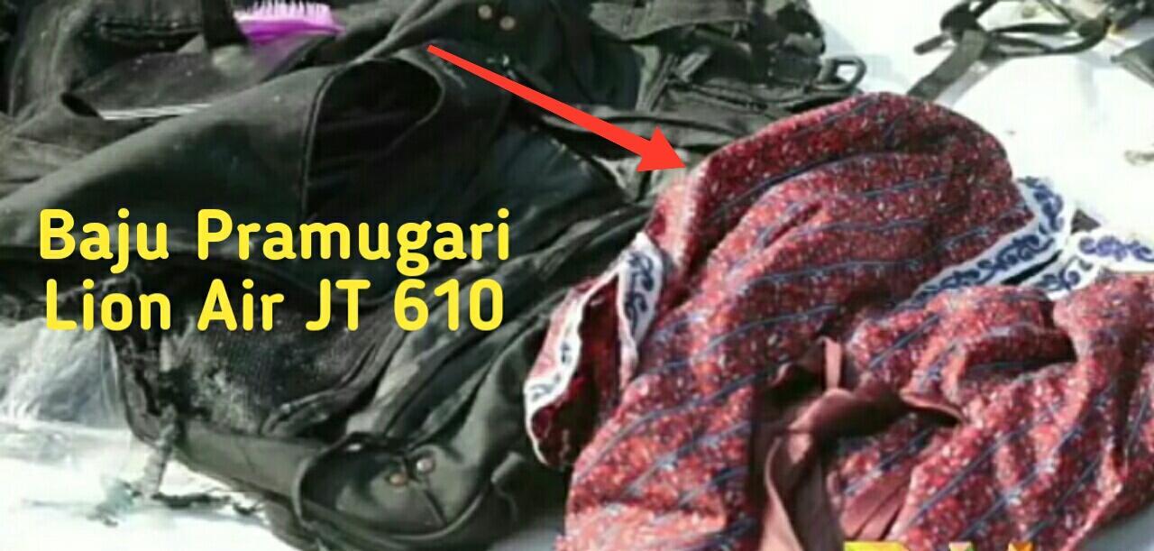 Ini Penyebab Tubuh Korban Lion Air Terpotong Versi Basarnas