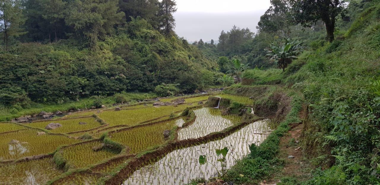 Wisata Renyung - Destinasi tersembunyi Pamijahan - Bogor, Jawa Barat