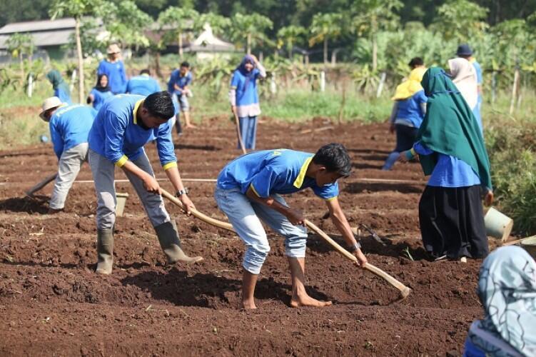Si Petani Kecil Mencoba Memaknai Sumpah Pemuda