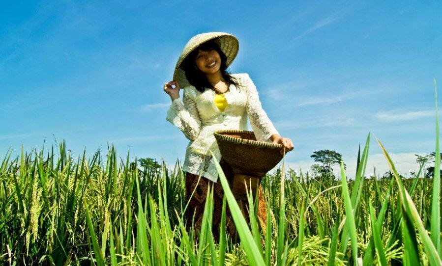 Para Pemuda Mari Kita Wujudkan Reforma Agraria & Kedaulatan Pangan Di Indonesia!