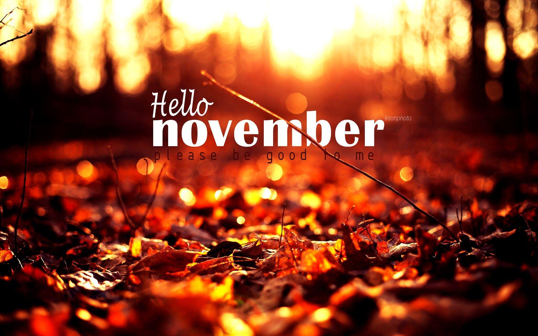Disebut Bulan Kematian, Ini 11 Fakta Unik Tentang Bulan November!