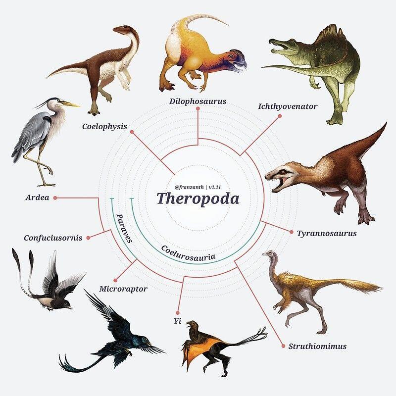 Telur Dinosaurus Ternyata Berwarna-warni seperti Burung! Ini Kata Ahli