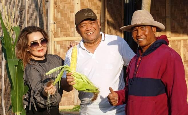 Pertanian Organik Kunci Utama Produk Indonesia Tembus Ekspor