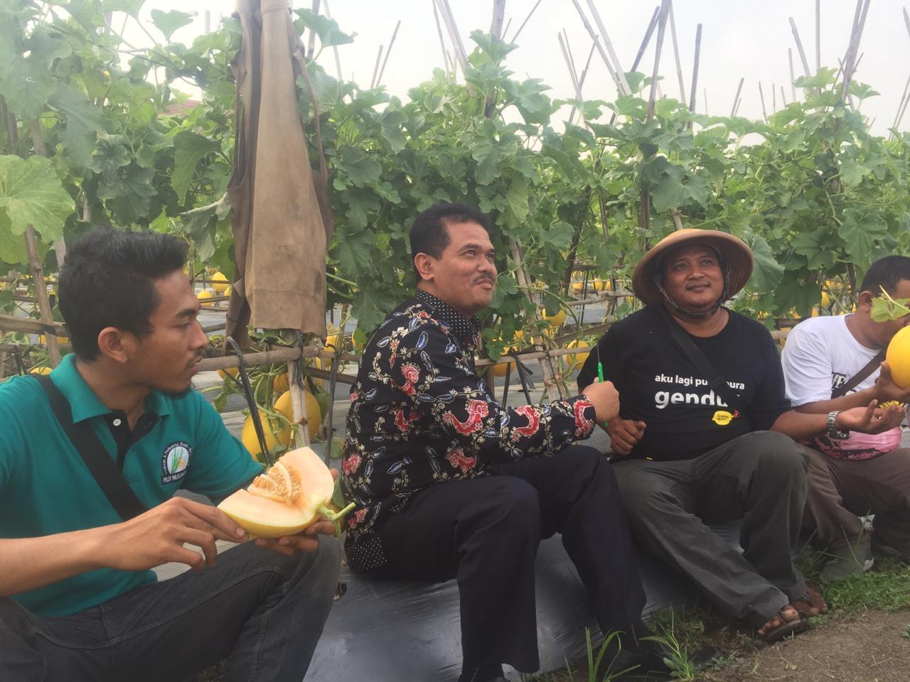 Kementan Dorong Petani Muda Kembangkan Hortikultura di Pinggir Bandara Soetta