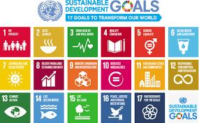 Indonesia Berkomitmen Capai Tujuan Pembangunan Berkelanjutan