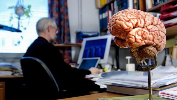 Total Ada 600 Otak Manusia di Brain Museum, Ini 8 Fakta Uniknya!