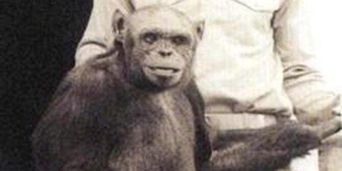 7 Eksperimen yang menyilangkan hewan dan manusia, mengerikan!