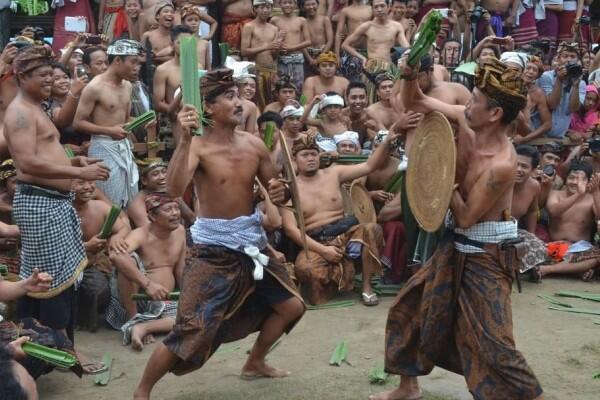 Perang Pandan, Perang Tak Biasa yang Hanya Ada di Bali