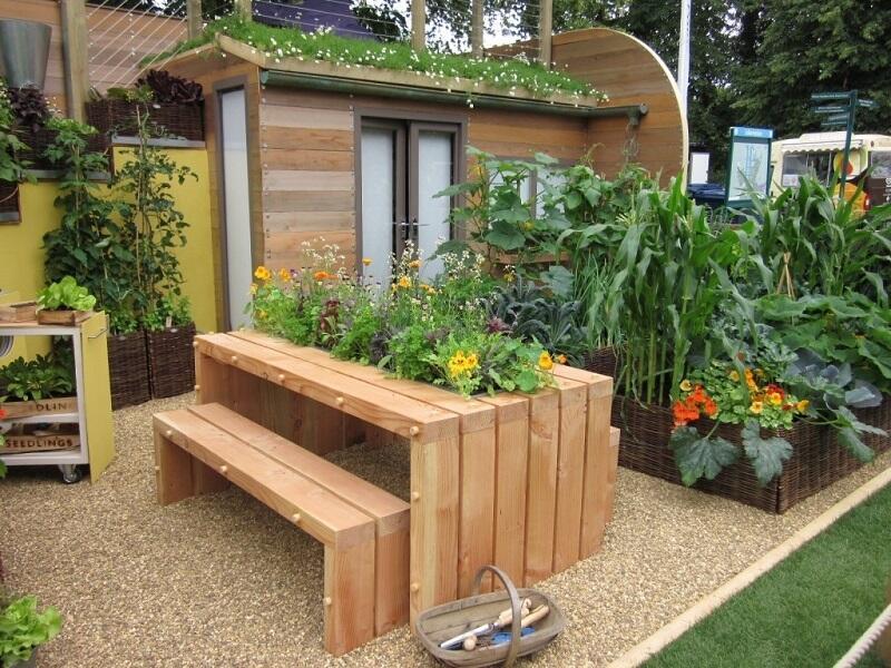 17 Ide Kreatif Bikin Kebun Sayur Di Rumah Sendiri Kaskus