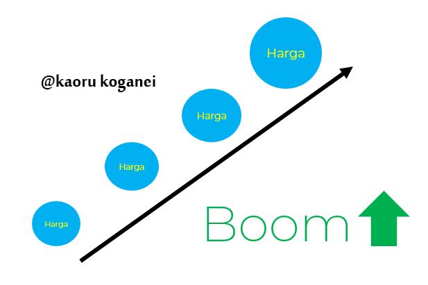 Economic Bubble : Ketika Berlebihan itu Tidak Baik