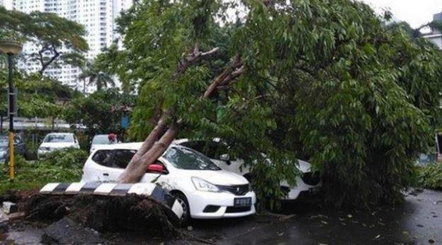 [Breaking News] Hujan Es Batu Terjadi di Wilayah Jakarta!