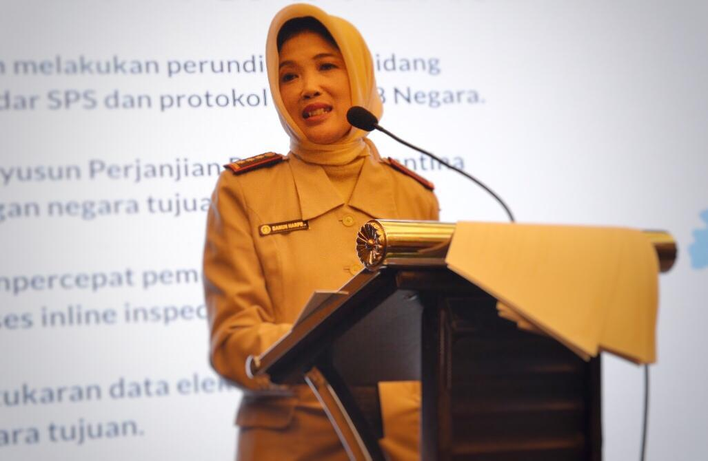 Pemerintah Jamin Indonesia Bebas Selada Romaine Tercemar E.Coli