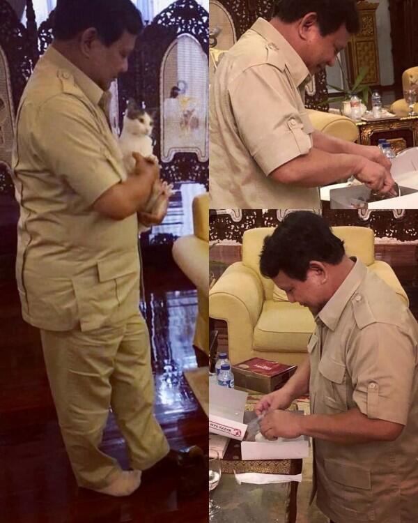 11 Momen Kebersamaan Prabowo & Kucing Kesayangannya, Cute Abis!