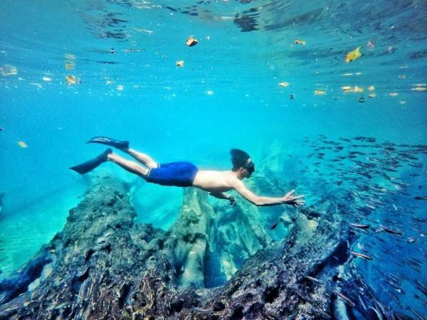 5 Spot Underwater Paling Kece di Malang, Instagramable Banget Lho!