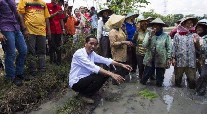 "Sssttt... Ada yang Bisiki Jokowi saat ke Sawah, ""Pak Awas, Becek"""