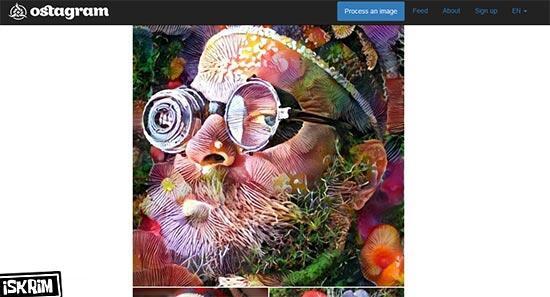 Berkreasi Seni Foto Dengan Efek Mie Pasta yang Bikin Kita Pengen Coba