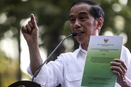 Presiden Serahkan SK Perhutanan Sosial di Sumatra Selatan