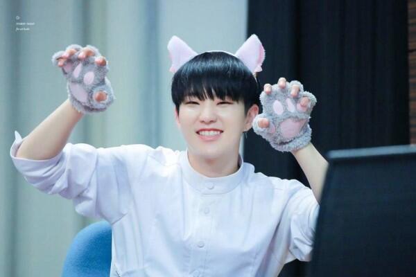 Ini Lho 5 Idol KPop yang Memiliki Wajah Kucing, Imut Banget!
