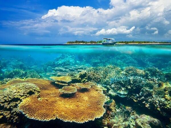 Bikin Betah Nyemplung! Ini 5 Spot Snorkeling Keren di Sulawesi Selatan