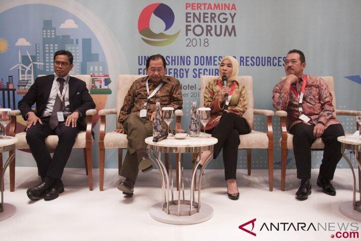 Pertamina Dorong Pengoptimalan Sumber Energi Lokal