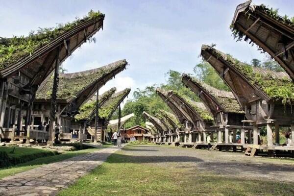 Inilah 5 Ikon Toraja Paling Kece dan Banyak Diminati Wisatawan