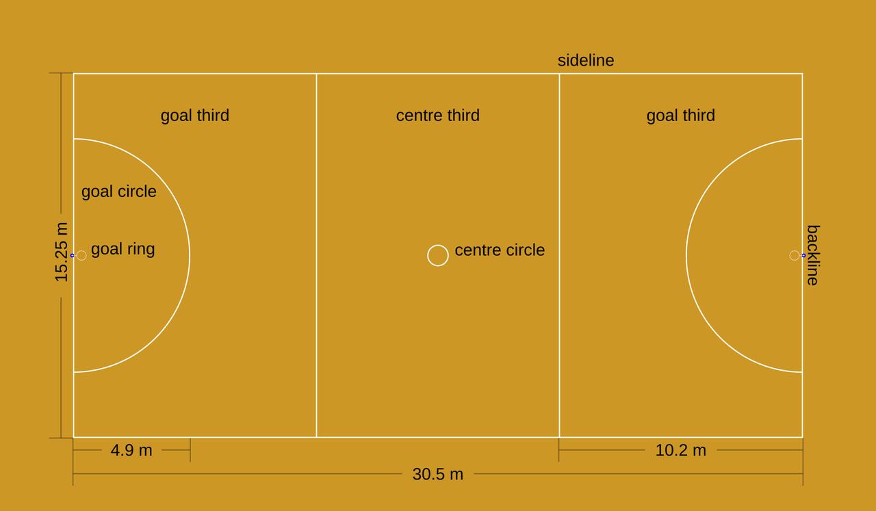 Begini Posisi Main Pada Olahraga Netball