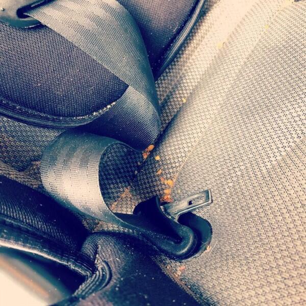7 Cara Mudah Mencegah dan Mengusir Jamur yang Hinggap pada Kaca Mobil