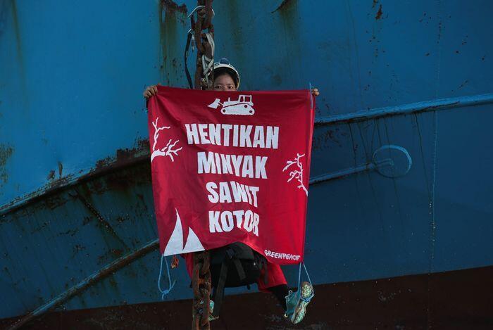 Prancis menolak boikot sawit Indonesia