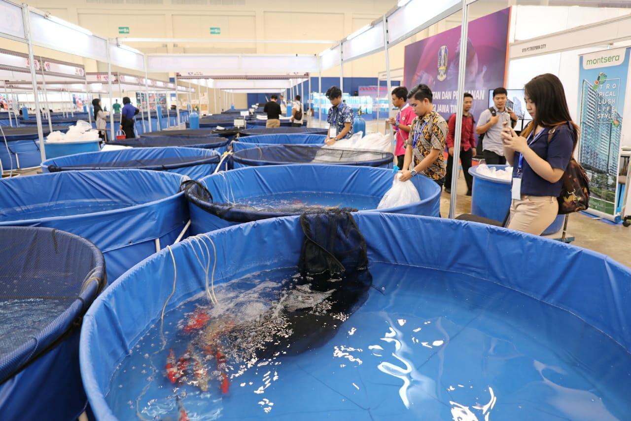 Nusatic 2018, Mewujudkan Indonesia Eksportir Ikan Hias Terbesar di Dunia