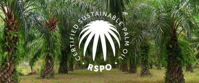 Stop Work Order RSPO Untuk Sawit Berkelanjutan