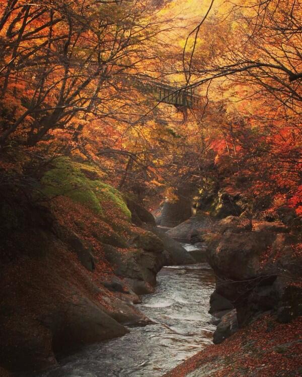 Liburan di Jepang Jangan Lupa Mampir ke 7 Desa Wisata Menarik Ini