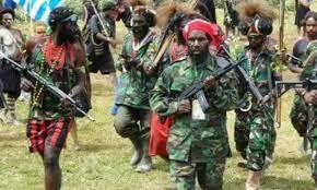 Penembakan Di Trans Papua, Menunggu Sikap Tegas Pemerintah